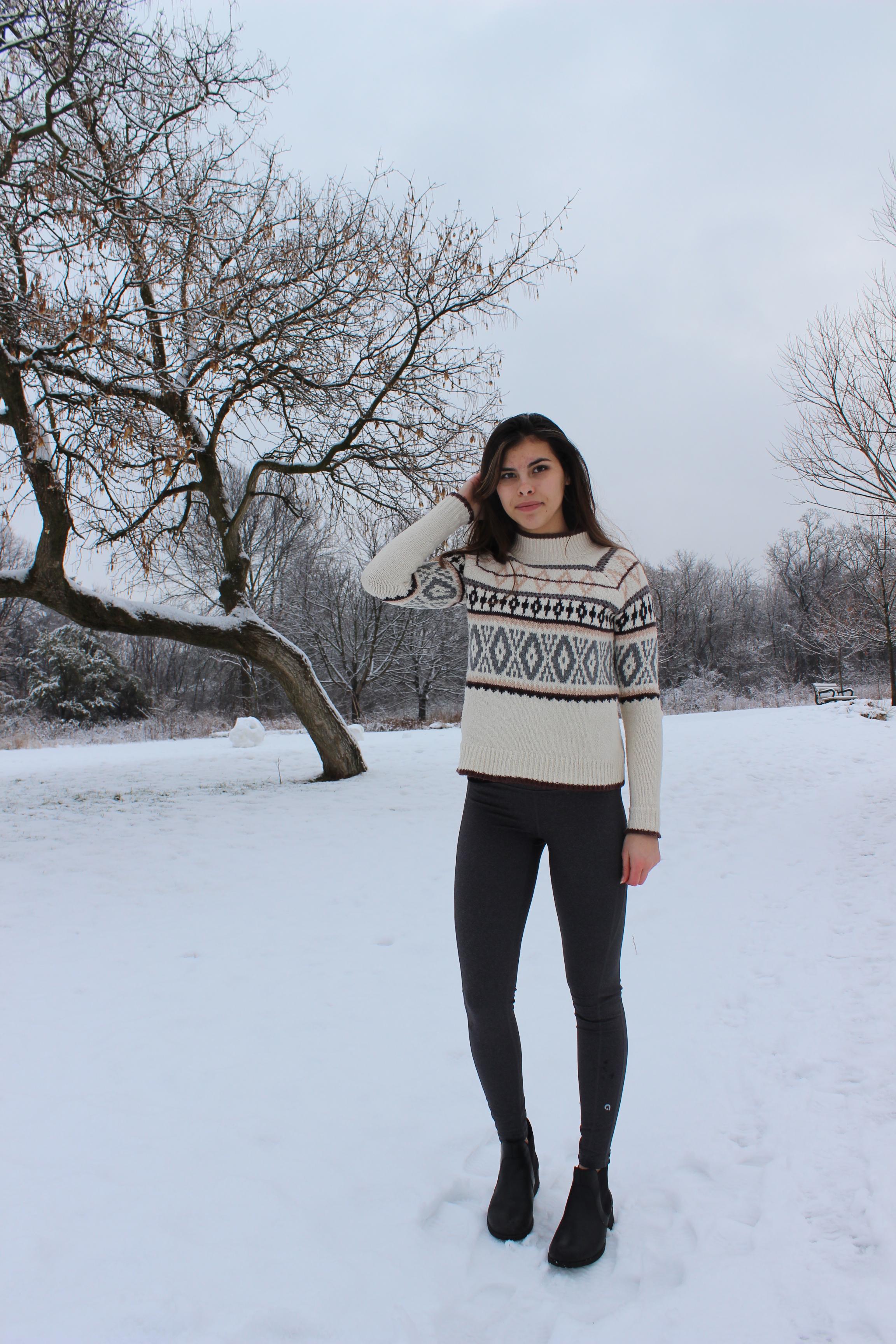 aeo-sweater